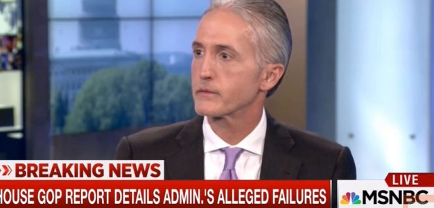 SCREENSHOT_Trey Gowdy_MSNBC_Benghazi Report_June2016