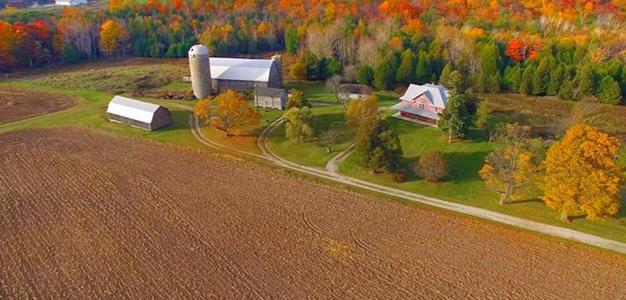 Aerial_View_Farm_Farming