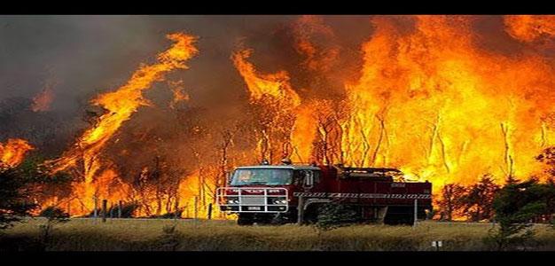 Australia_Bush_Fires