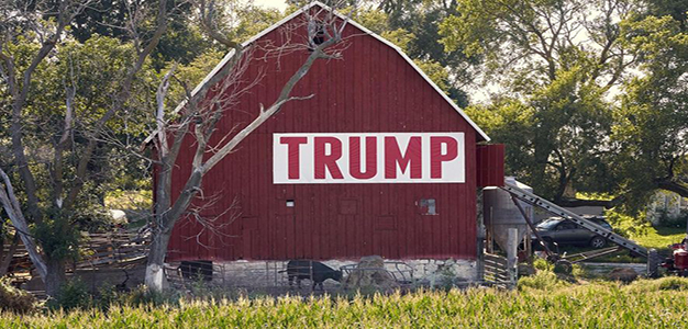 Barn_Trump_Farm