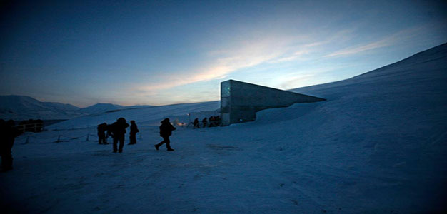Second Doomsday Vault: Library of the Apocalypse…