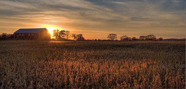Farm_at_Sunset