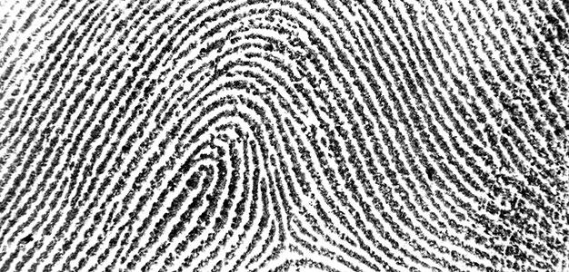 Fingerprint Up Close