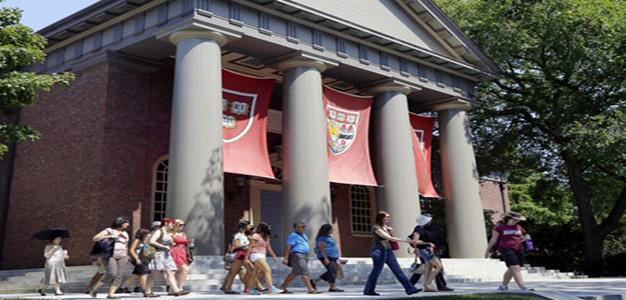 Harvard_University_Elise_Amendola
