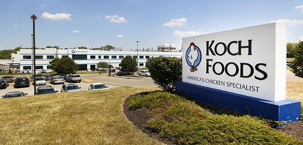 Koch_Foods