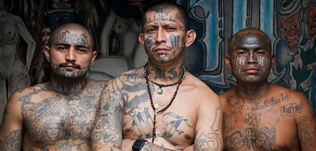 REPORT: MS-13 Spreads to 22 States, Fed by 300,000 Illegals…