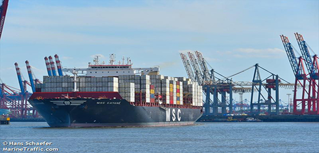 MSC_GAYANE_Shipping_Container