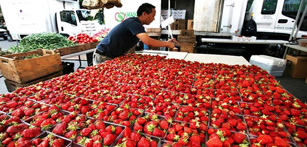 Strawberries_Food_AP