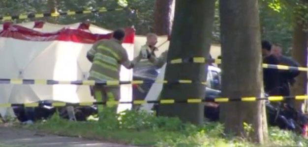 Tesla crash in Holland