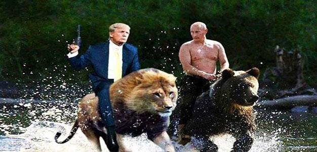 donald_trump_Lion_vladimir_putin_bear