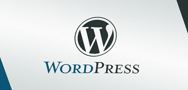 wordpress_theme_hacking